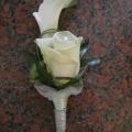 kvetiny0002