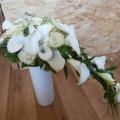 kvetiny0008
