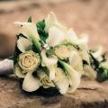 kvetiny0009